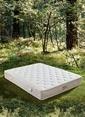 Hibboux Botanic Pocket Yaylı Yatak 160x200 Cm Beyaz